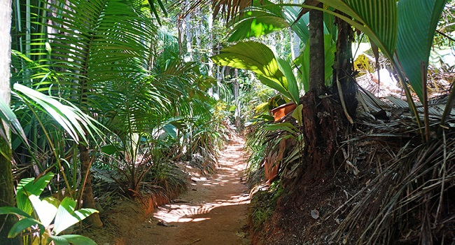 Seychelles Islands Journey to paradise3