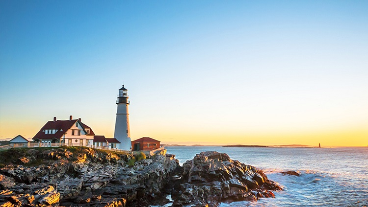 7 curiosities you do not know about New England6